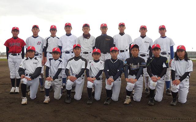 北海道日本ハムファイターズジュニアチーム